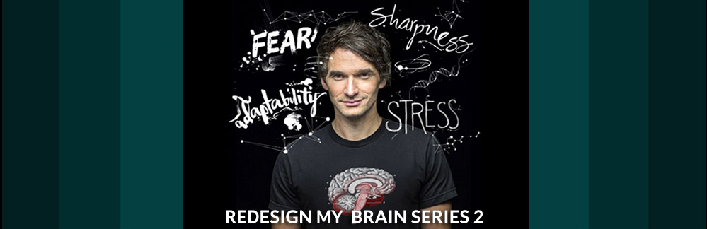 REDESIGN BY BRAIN SERIES 2